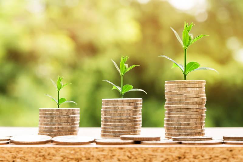 Geldmünzen und Pflanzen