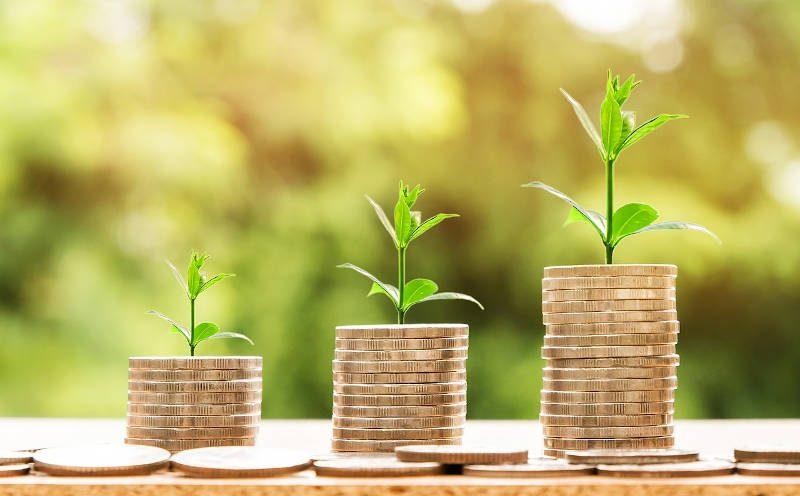 Stapel Geldmünzen mit Pflanzen